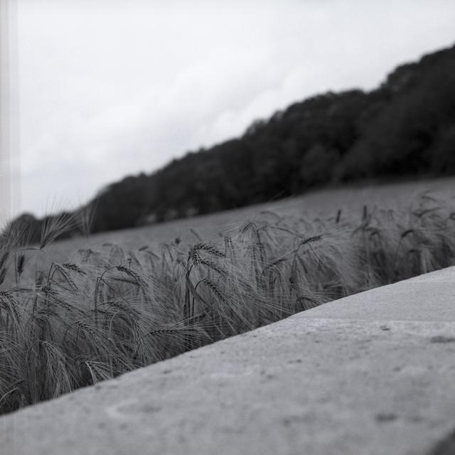 Chemin de Dames-5