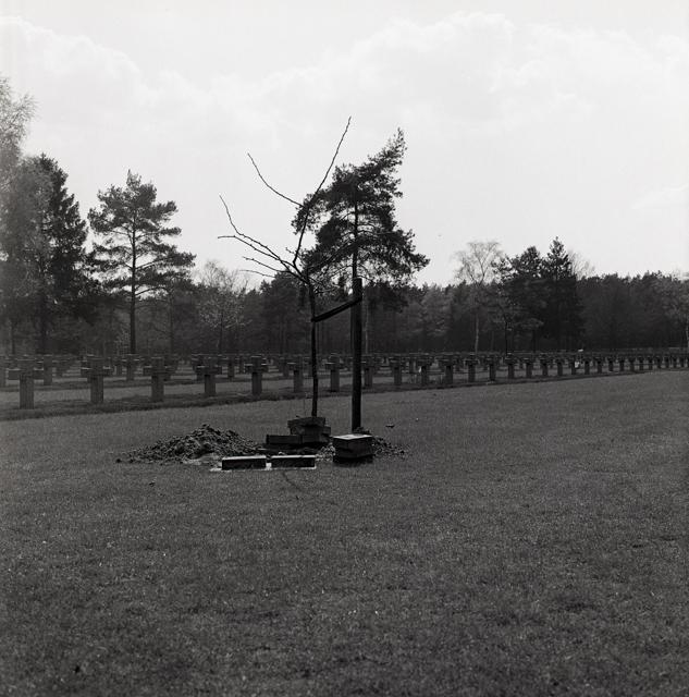 Duitse militaire begraafplaats-213